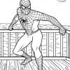 Desenhos para colorir Homem Aranha 02