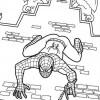Desenhos para colorir Homem Aranha 03