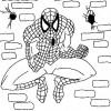 Desenhos para colorir Homem Aranha 09