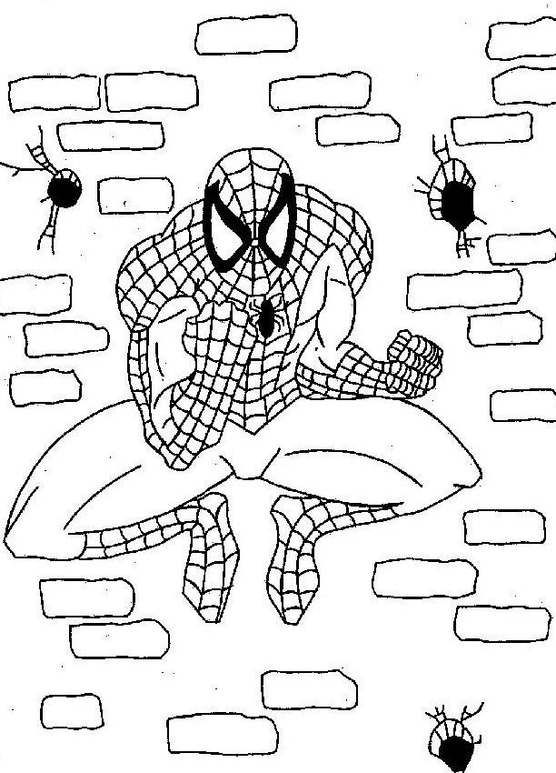 Desenhos para imprimir e colorir do homem aranha spiderman picture
