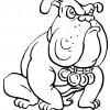 desenho-de-buldog-para-colorir-desenho-de-animais-domasticos