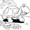 desenho-de-jabuti-para-imprimir-desenhos-infantil-para-download
