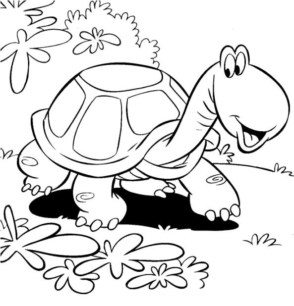 Preferência Desenhos para imprimir, colorir e pintar de Animais PN07
