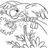 desenho-de-papagaio-para-colorir-desenhos-infantil-de-animais
