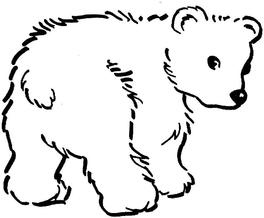 Desenhos Para Imprimir Colorir E Pintar De Animais