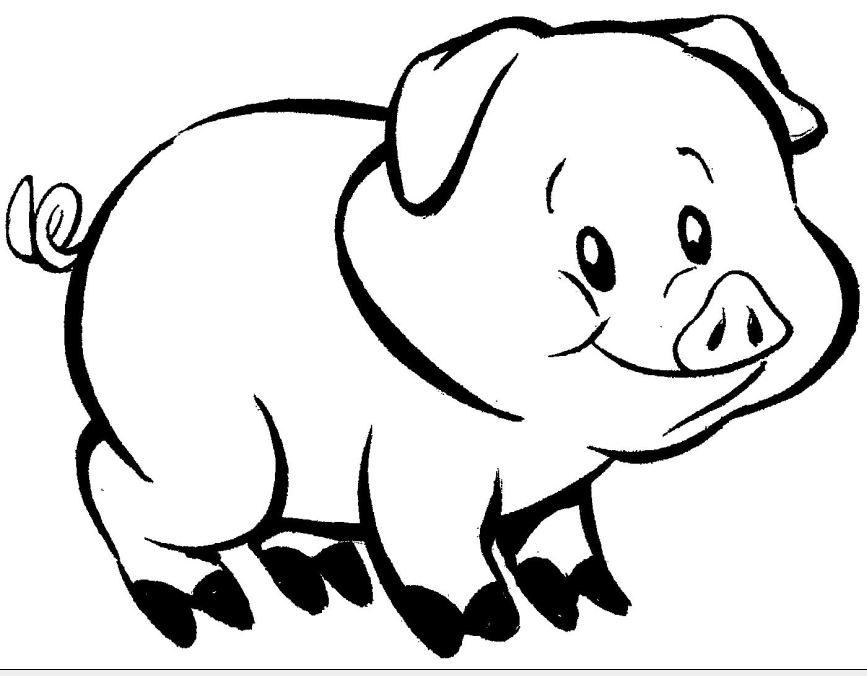 Porquinho Para Colorir E Imprimir Desenho De Animais