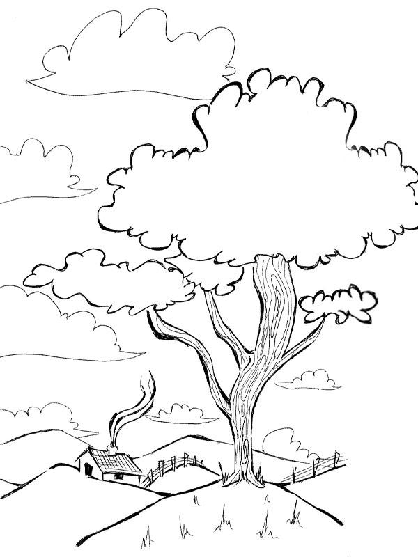 Diversos Desenhos Para Imprimir E Colorir Sobre Meio Ambiente