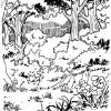 Desenhos colorir Meio Ambiente 19