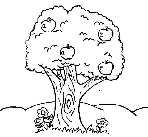Desenhos De Arvores 21 De Setembro Dia Da Arvore