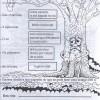 atividades-meio-ambiente-04