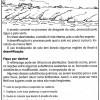 atividades_4º_ano(6)