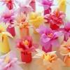Lembrancinhas para Primavera 13