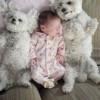 Crianças e animais 10