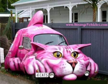 Carro Gato