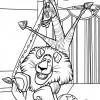 desenhos-madagascar-3-02