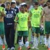 Palmeiras é rebaixado